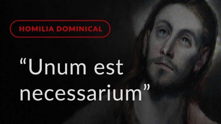 """""""Unum est necessarium"""" (Homilia Dominical.462: 16.º Domingo do Tempo Comum)"""